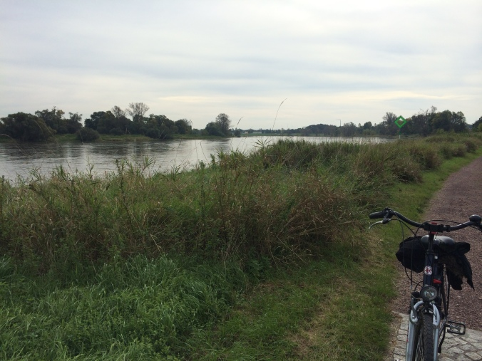 Bike tour in Dessau, Germany through a biosphere along the Elbe River.